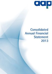 Consolidated Annual Financial Statement 2013